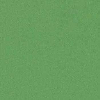 CARTULINA IRIS 50X65 185G VERDE BILLAR