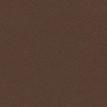 CARTULINA IRIS 50X65 185G CHOCOLATE